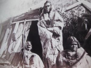 La tribu, y la tienda, son mías
