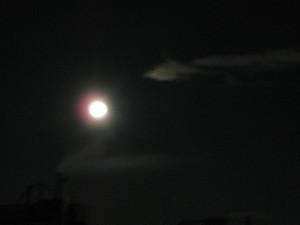Larga noche