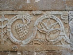 Cepas y piedra